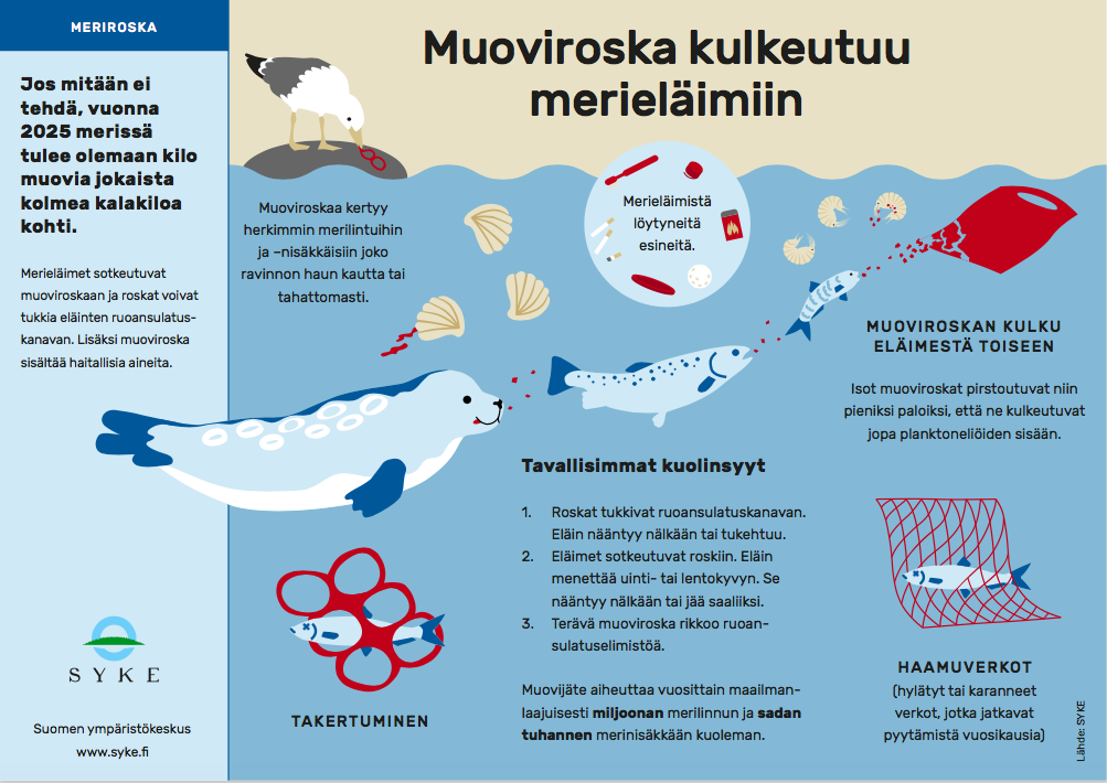 muoviroska-kulkeutuu-meriin